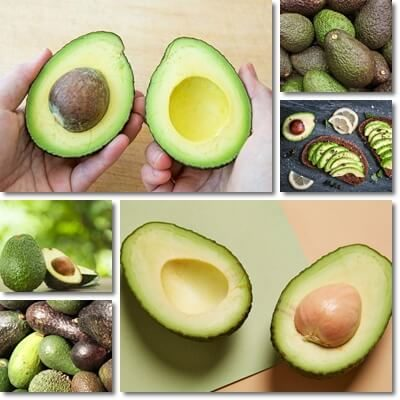 Effetti collaterali avocado
