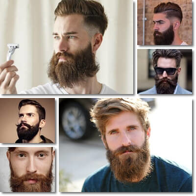barba folta ed ordinata