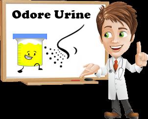 puzza delle urine e cattivo odore pipi