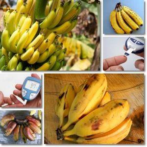 Posso mangiare le banane se ho il diabete?