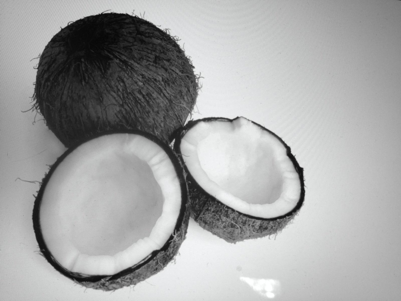 Coconut Black: funziona davvero per dimagrire?